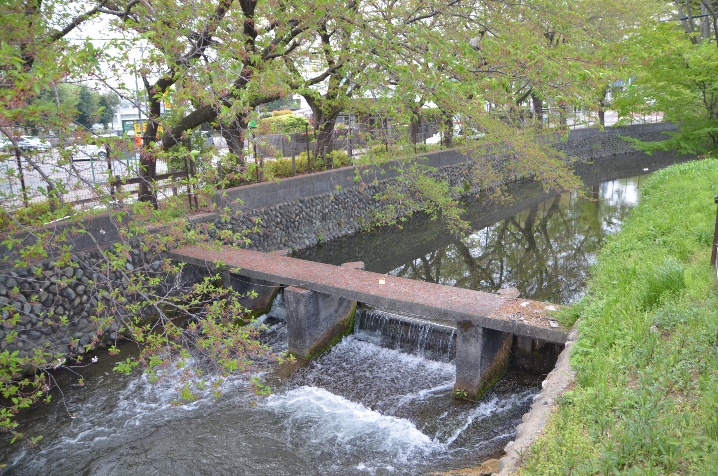 水と緑あふれる住環境