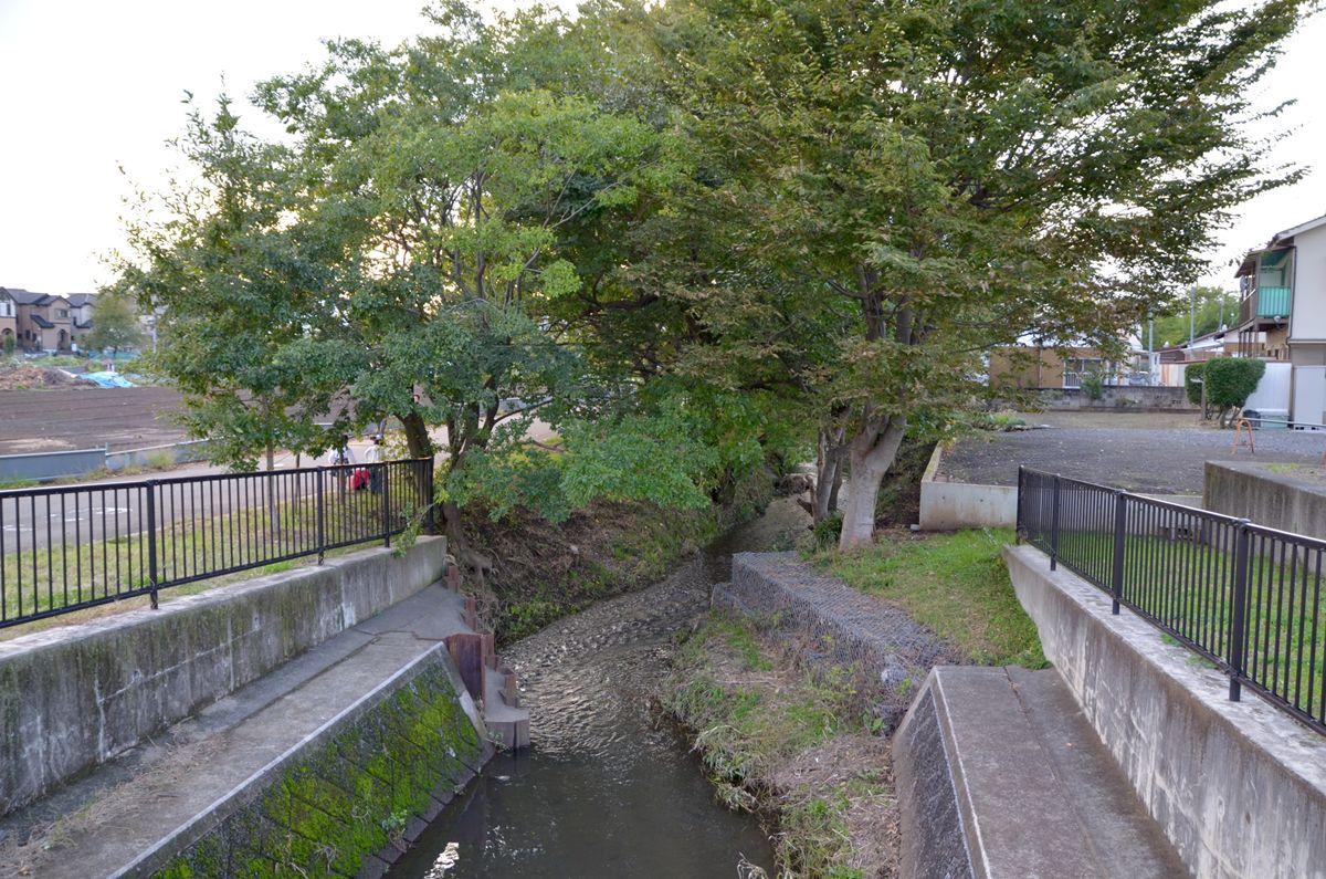 すぐ裏に小川が流れる!自然豊かな住環境